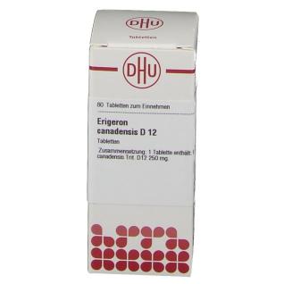 DHU Erigeron Canadensis D12