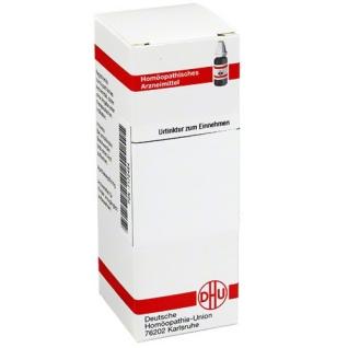 DHU Levisticum Officinale Urtinktur