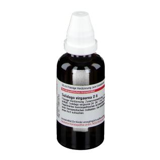 DHU Solidago Virgaurea D6