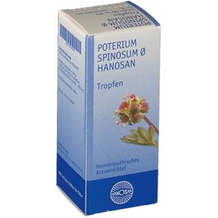 Poterium Spinosum Ø Hanosan