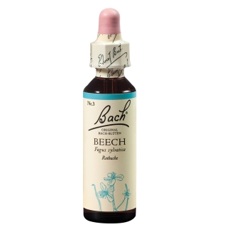 BACH®-BLÜTE BEECH (Rotbuche)