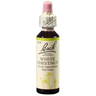 BACH®-BLÜTE WHITE CHESTNUT (Weiße Kastanie)