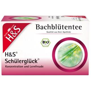H&S Bio Bachblütentee Schülerglück Nr. 82