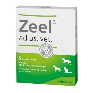Zeel® ad us. vet. Ampullen