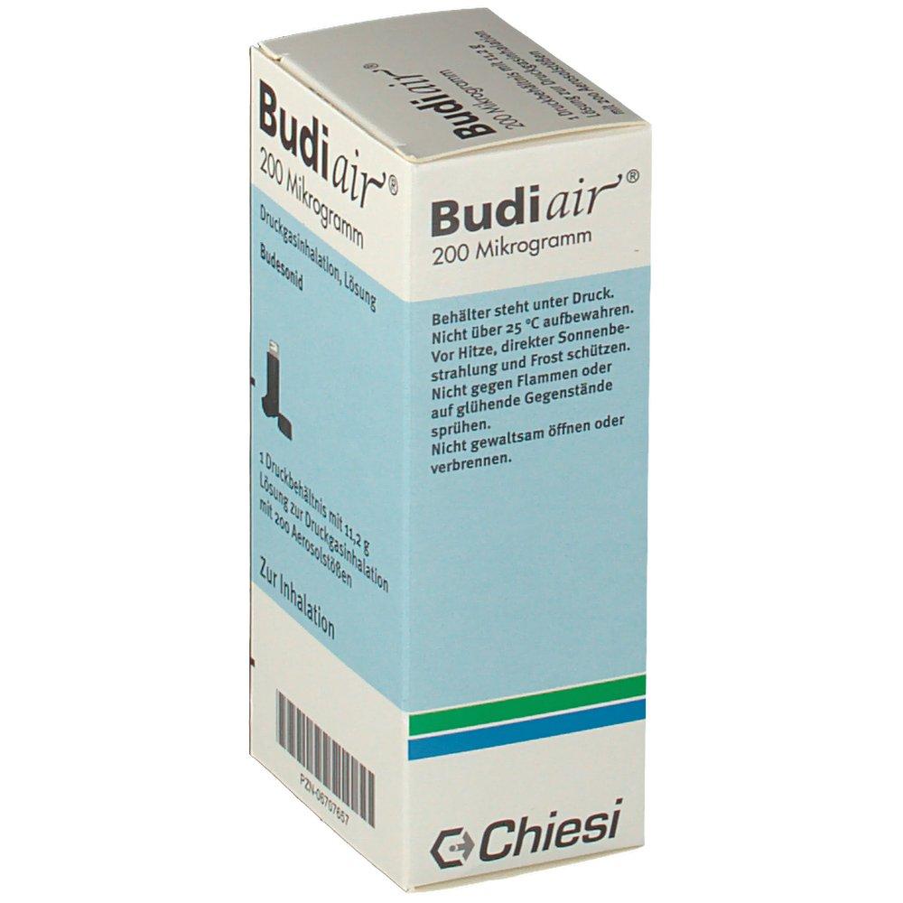 Budiair Alternative