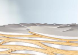 Regenerierte Haut-Lipid-Barriere