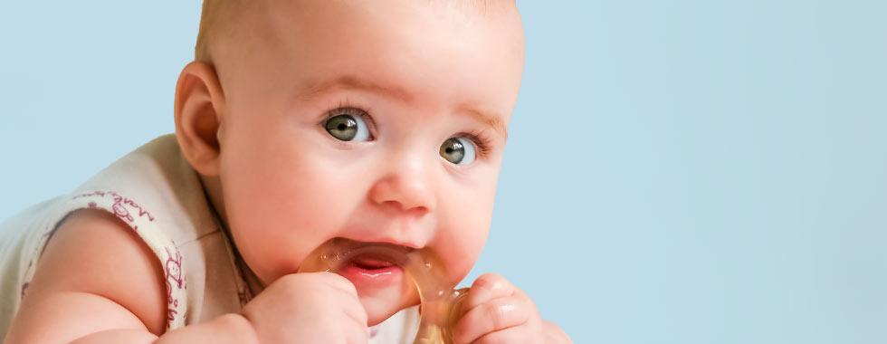 Babys Erste Zähnchen Was Hilft Beim Zahnen Shop Apothekecom