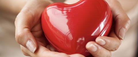 Mikronährstoffe, unverzichtbar für Muskeln und Herz!