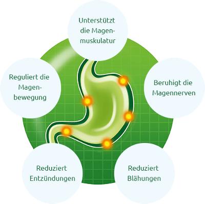 MIT DER KRAFT DER NATUR GEGEN MAGEN- UND DARM-BESCHWERDEN. Produkte ...