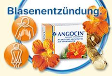 ANGOCIN® Anti-Infekt N - Erste Hilfe bei Blasenentzündung